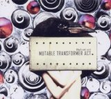 Mutable Transformer Act Lyrics Black Cat Zoot