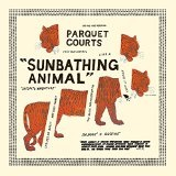 Sunbathing Animal/Content Nausea Lyrics Parquet Courts