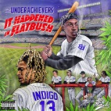It Happened In Flatbush Lyrics The Underachievers