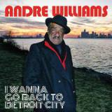 I Wanna Go Back To Detroit City Lyrics Andre Williams