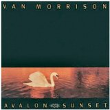 Avalon Sunset Lyrics Morrison Van