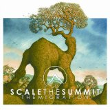 The Olive Tree Lyrics Scale The Summit