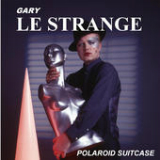 Polaroid Suitcase Lyrics Gary Le Strange