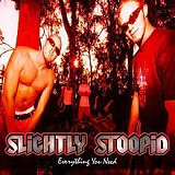 Everything You Need Lyrics Slightly Stoopid