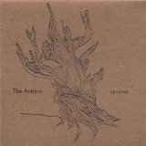 Uprooted Lyrics The Antlers