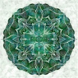 Newborn Mind Lyrics Napoleon