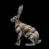 Jackrabbit Lyrics San Fermin