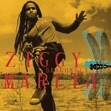 Dragonfly Lyrics Ziggy Marley