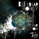 Here & Now Lyrics Blue Lunar Monkey