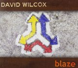 Miscellaneous Lyrics David Wilcox