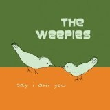 Say I Am You Lyrics The Weepies