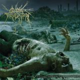 The Anthropocene Extinction Lyrics Cattle Decapitation