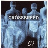 .01 Lyrics Crossbreed