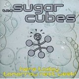 Heretoday Lyrics Sugarcubes