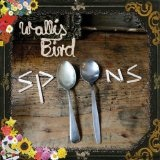 Spoons Lyrics Wallis Bird