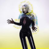 Vulnicura Lyrics Bjork