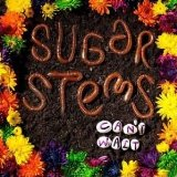 Can't Wait Lyrics Sugar Stems