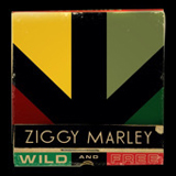 Forward To Love (Single) Lyrics Ziggy Marley