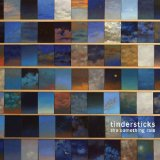 The Something Rain Lyrics Tindersticks