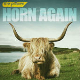 Horn Again Lyrics The Pillows