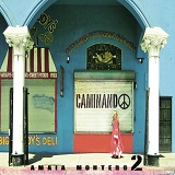 Caminando (Single) Lyrics Amaia Montero