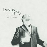 Foundling Lyrics David Gray