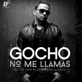 Amor Real Lyrics Gocho