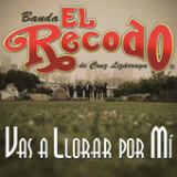 Vas a Llorar por Mí (Single) Lyrics Banda El Recodo de Cruz Lizarraga