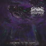 Ascending to the Worms Lyrics Euphoric Defilement