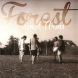 Caramel Arms (EP) Lyrics Forest