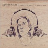 Died In The Wool Lyrics David Sylvian