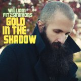 Gold In The Shadow Lyrics William Fitzsimmons