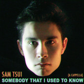 Somebody That I Used To Know (A Cappella) (Single) Lyrics Sam Tsui