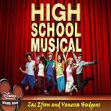 High School Musical Lyrics Zac Efron And Vanessa Hudgens