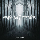 Grass Ain't Greener (Single) Lyrics Chris Brown