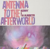 Antenna To The Afterworld Lyrics Sonny & The Sunsets