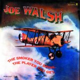 The Smoker You Drink The Player You Get Lyrics Joe Walsh