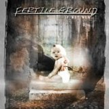 If Not Now... Lyrics Fertile Ground
