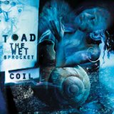 Coil Lyrics Toad The Wet Sprocket