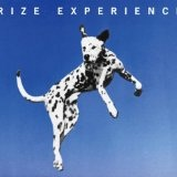 Experience Lyrics Rize