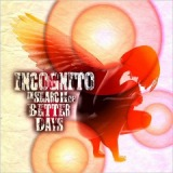 In Search Of Better Days Lyrics Incognito