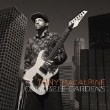 Concrete Gardens Lyrics Tony MacAlpine