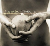 Between Darkness and Wonder Lyrics Lamb