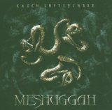 Catch Thirtythree Lyrics Meshuggah