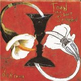 Dulcinea Lyrics Toad The Wet Sprocket