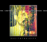 Excitotoxicity Lyrics Nurse With Wound & Graham Bowers