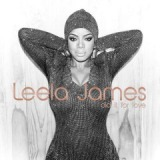 Did It For Love Lyrics Leela James