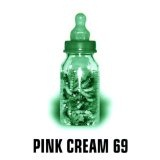 Food For Thought Lyrics Pink Cream 69