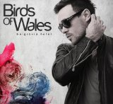 Miscellaneous Lyrics Birds Of Wales
