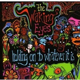 Holding On To Whatever It Is Lyrics The Waking Eyes